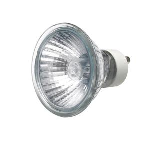 Lamps (Halogen & CFLs)